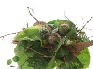 kaktus og sukkulenter sommerbuket