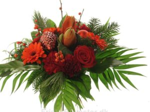 amaryllis og roser