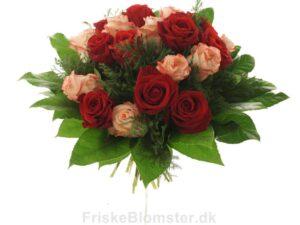 roser i forskellige farver