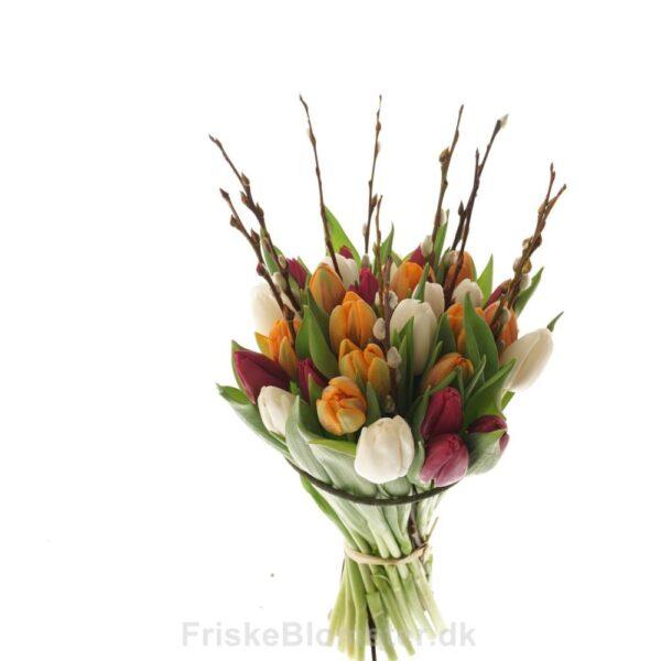 tulipaner og magnolia grene
