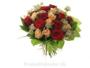 blanding af roser