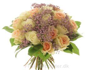 pastelfarvede roser